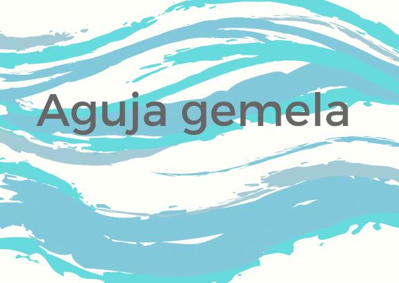 Agujas Gemelas